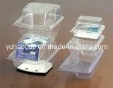 Voedsel Packaging Containers (de grootte Any die u hebt gevraagd) (yhp-055)