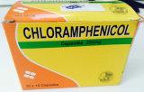 クロロアムフェニコールは250mg B.P.を要約する