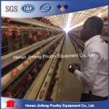 Cages galvanisées agricoles de poulet de ponte d'oeufs