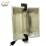 1000W 디지털 전자 밸러스트 (온실, 수경법 점화를 위해)