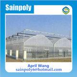 Invernadero al por mayor del Multi-Palmo de la Plástico-Película de la alta calidad para hidropónico