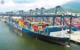 A mais baixa taxa do transporte para o frete de mar (LCL & FCL & consolidação)