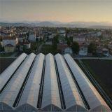 Aduana barata vendedora caliente invernadero multi plástico resistente ULTRAVIOLETA de la película del palmo de 200 micrones