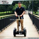 Motorino elettrico poco costoso del motorino elettrico del vagabondo del vento
