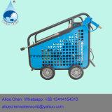 De Pomp van het Water van de Zuiger van de autowasserette en van de Hoge druk en de Pomp van de Druk