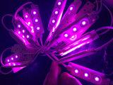 5050 3LEDs helle Baugruppe der Einspritzung-LED ohne Objektiv
