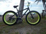 軽量の合金のShimano Derailleurの脂肪質のタイヤ浜の自転車