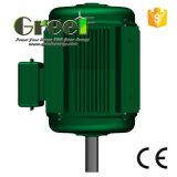 120/220/230/380VAC трехфазный Pmg для турбины ветра и воды