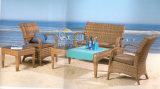 Insiemi esterni del sofà, mobilia del rattan del patio, insiemi del sofà del giardino (SF-308)
