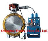 Hydraulische Steuerung flanschte Drosselventil (D743H)