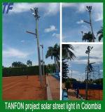 30W 40W LED Solarstraßenlaterne-Angebot T mit allen Bauteilen IP66
