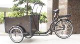 Drei Rad-elektrisches Fahrrad mit grossem Träger