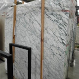 Het hogere Witte Marmer van Italië Arabescato van de Tegel van de Muur van de Decoratie van de Villa Materiële Marmeren