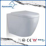 Le mur a arrêté la toilette duelle de lavage à grande eau (ACT5262B)