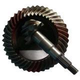 Ingranaggi conici di spirale della trasmissione dell'asse di azionamento del camion del Fukuda del metallo di precisione BS0300 10/41