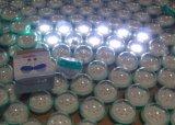 voor Draagbare AC van het Gebruik van het Huis Zonne Aangedreven LEIDEN Draagbaar Licht