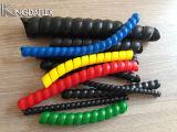De kleurrijke Spiraalvormige Wacht van de Slang
