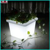 装飾的な花のプラント鍋によって照らされるLED軽いランプの庭のホーム