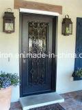 جيّدة سعر [ورووغت يرون] صنع وفقا لطلب الزّبون باب وحيد لأنّ حديقة