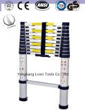 Geschickter Entwurfs-Aluminiumstrichleiter von 10 Jobstepps
