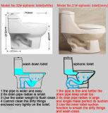 De x-Val van Rusland Goedkoop Ceramisch Tweedelig Toilet