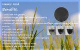 Água - ácido Humic super solúvel do pó ou do floco