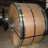 Überzogener Stahlring, Haupt-PPGI Blätter