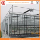 Jardim/cultivo das casas verdes de vidro do túnel para Growing do vegetal/flor