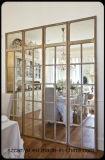 Disegno di alluminio di vetratura doppia di standard della finestra francese As2047 di Nz & dell'australiano