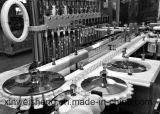 Linha de produção deEnchimento-Stoppling líquida do tubo de ensaio para farmacêutico (GLX2-25)