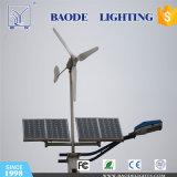 60W solare e 300W indicatore luminoso di via ibrido del vento LED (BDTYNSW1)