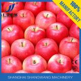 Cadena de producción del concentrado del zumo de manzana máquina de rellenar del jugo de /Apple