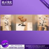 Цена 250&times фабрики Китая дешевое; 750 плитка стены плитки Inkjet строительного материала 3D керамическая