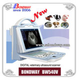 医学の製品の携帯用デジタル獣医の超音波