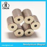 Magneet van het Neodymium NdFeB van de Cilinder van de Ring van de douane de Sterke Permanente