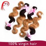 Cheveux humains dessinés par double de Vierge brésilienne de cheveu d'Ombre 1b/27