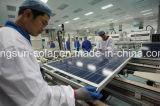 comitato solare prefabbricato di alta efficienza 170W mono