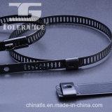 الايبوكسي المغلفة PVC SS304 316 سلم نوع الذاتي قفل الفولاذ المقاوم للصدأ الكابل التعادل