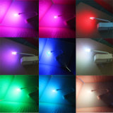Licht van de LEIDENE van het Toilet van het toilet het Menselijke het Hangen Nacht met Kleur 8