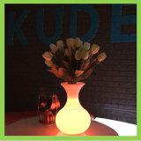 Lampe à piles colorée sans fil de vase au vase à fleur de lumière de nuit DEL