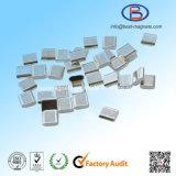 電子工学またはセンサーのための走路の形のNdFeBの強い磁石