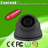 Камера CCTV IP обеспеченностью купола доказательства вандала OEM 1080P водоустойчивая (SHR30)