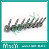 Estampagem Die Solid DIN Stainless Steel Stripper Bolt Screw