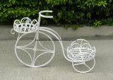 2개의 층 우아한 자전거 재배자 홀더