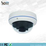 H. 264 P2p BinnenIP van de Veiligheid van de Koepel Camera met de Panoramische Lens van 360 Graad