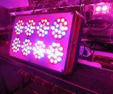 la planta de 120*3W LED crece el espectro completo ligero para el hidrocultivo (Apolo 8)