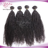 8A Grade Kinky Curly Brazilian Human Virgin Hair Wig