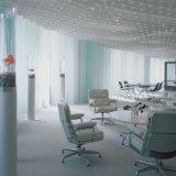 Cadeira moderna clássica do escritório da entrada dos tempos de lazer
