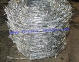 熱い浸された電流を通された有刺鉄線/PVCの上塗を施してある有刺鉄線Bwg 14X16
