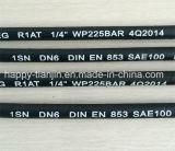 R1/1sn flexible hydraulische Hochdruckschlauchleitung